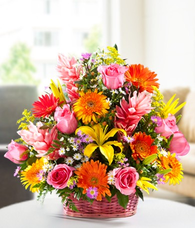 Bouquet Multicolor