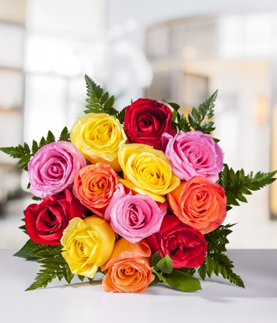 Dozen Assorted Roses
