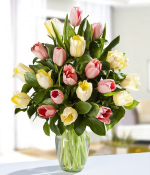 20 Mixed Tulips
